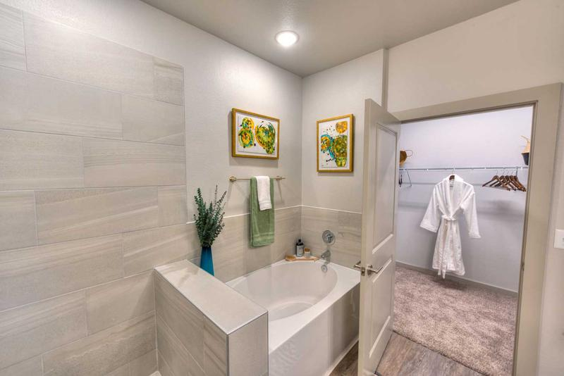 The Pointe at Valley Ranch rental