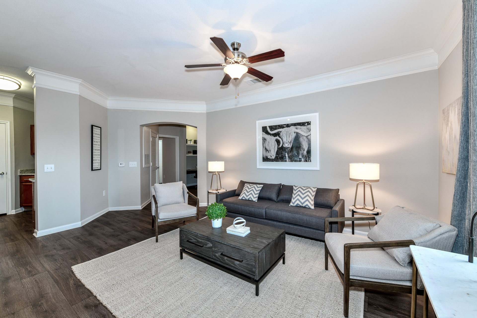 Artesian on Westheimer rental