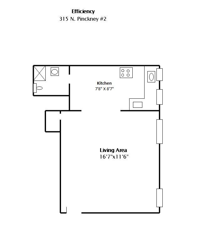 Studio 1 Bathroom Apartment for rent at 315 N Pinckney in Madison, WI