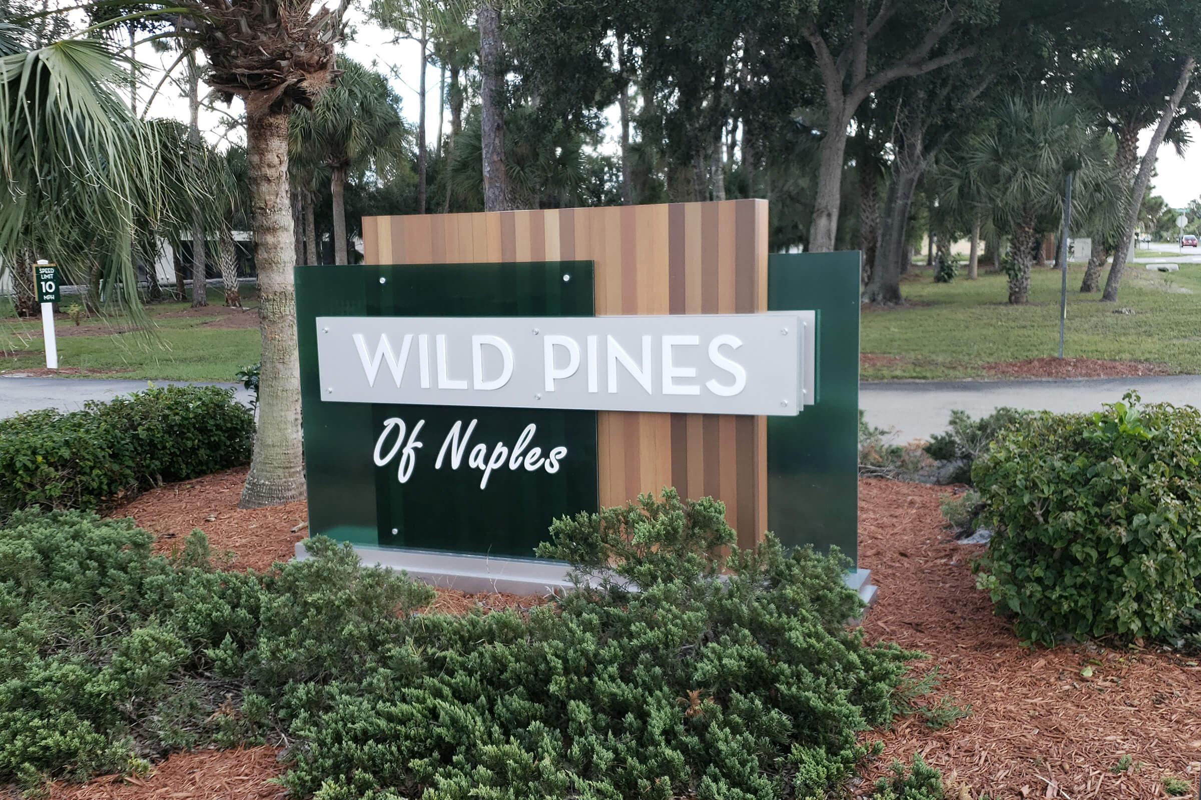 Wild Pines TC Phase