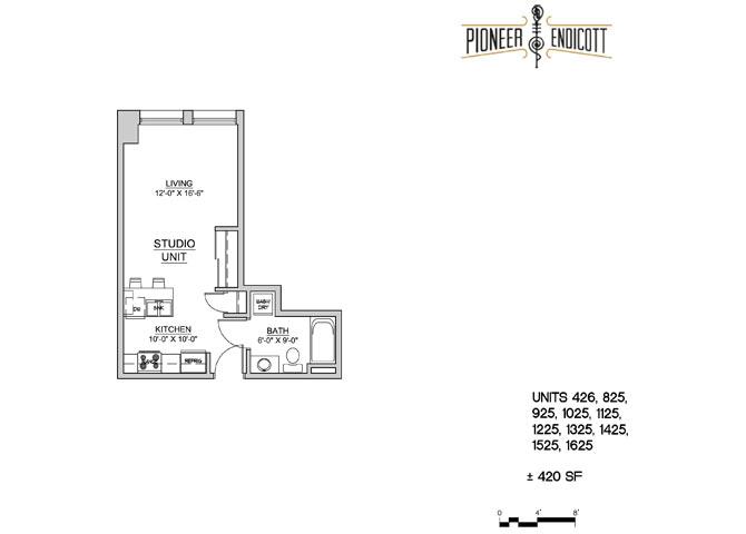 Pioneer Endicott