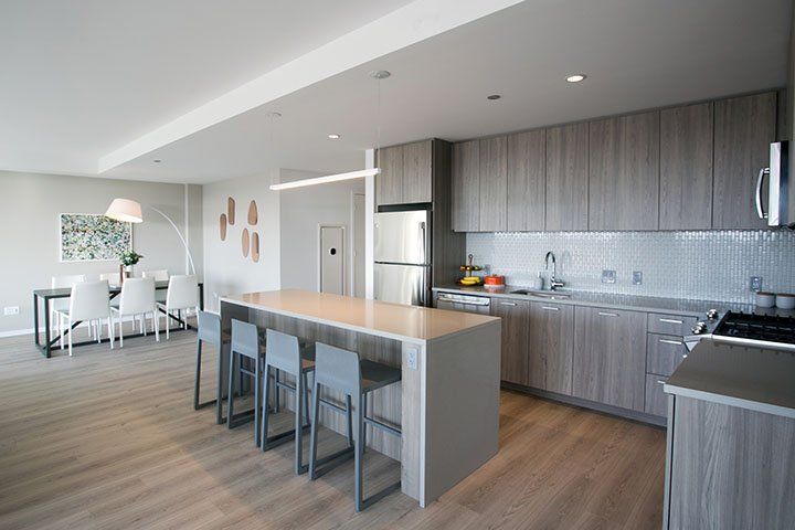 3 Bedrooms 1 Bathroom Apartment for rent at Solstice on the Park in Chicago, IL